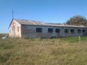 Продается здание фермы в аварийном состоянии. Фастов